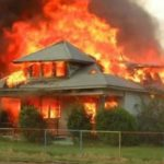 House Fires and Pets