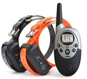 The Best Dog Shock Collar Reviews